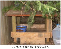 wooden feeding station with an open design